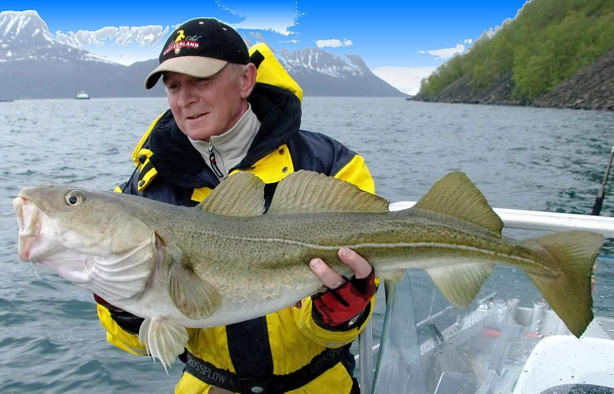 когда лучше всего ехать в норвегию на рыбалку