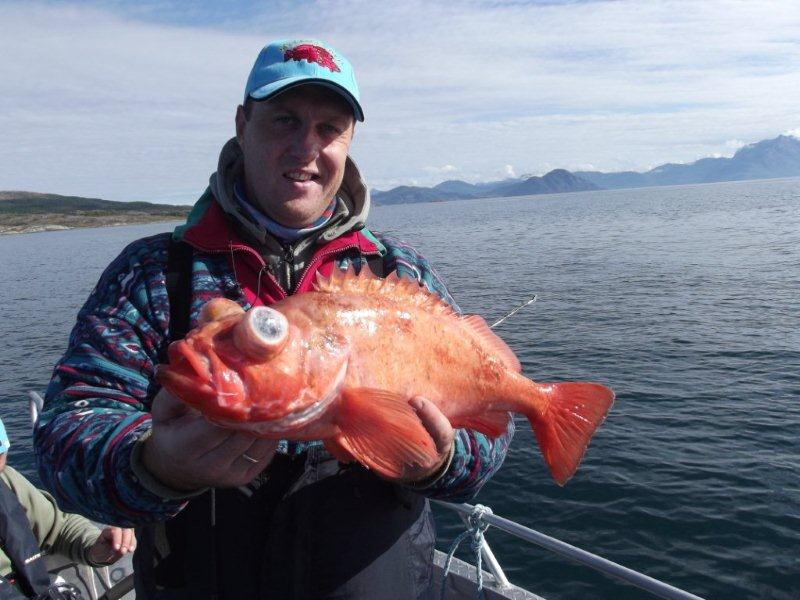 рыбалка в кременчуге и его окрестностях