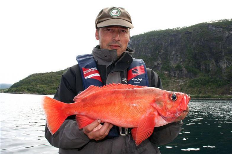 морской рыбак фото
