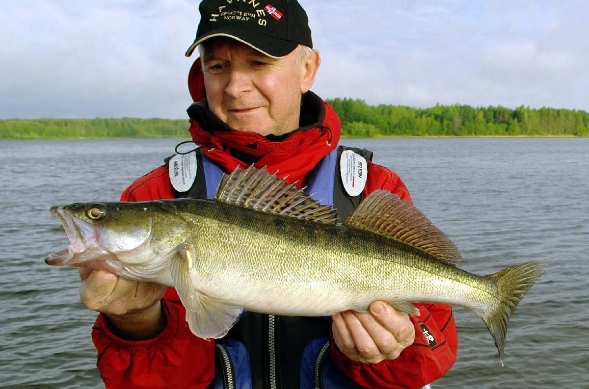 Рыбалка в весьегонске 2019 форум